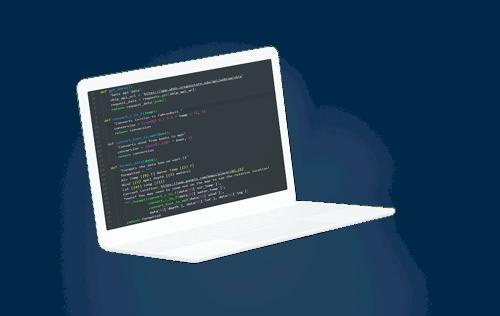 api coding on laptop