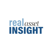 real asset insight logo